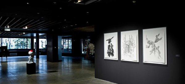 Ormanda Yürüyenler: Sanatçı/Hikaye Anlatıcısı